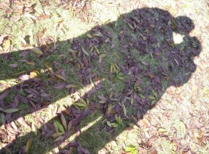 couple shadow