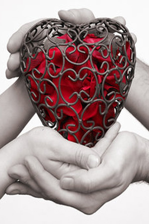 a_heart_full_of_roses_by_fuchsphotoEDIT