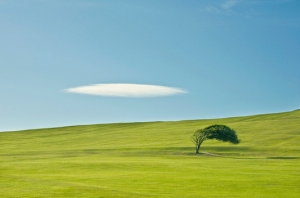 120620-155001-Shaped_by_nature-large EDIT