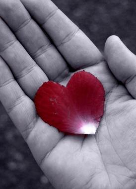 p-romantic-pictures-009